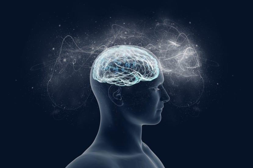Imagen de cerebro humano