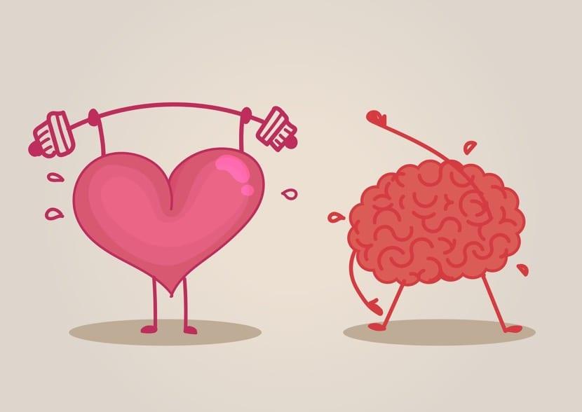 entrenar y cuidar la mente y el cuerpo