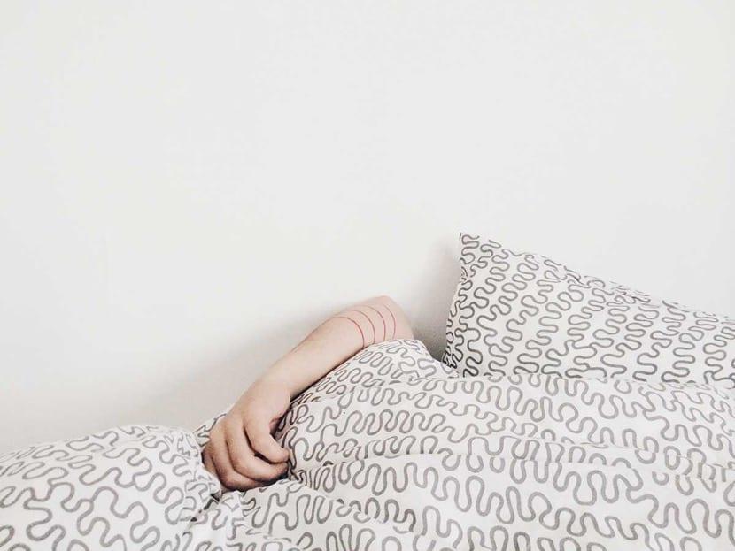 sueño polifásico