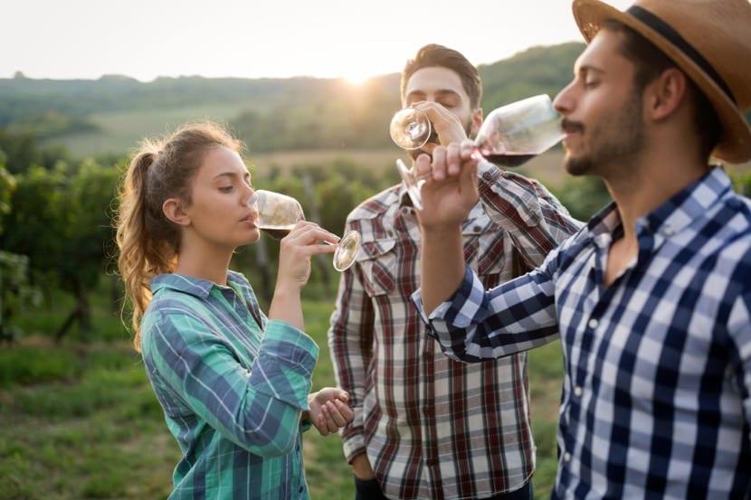 personas hedonistas bebiendo vino