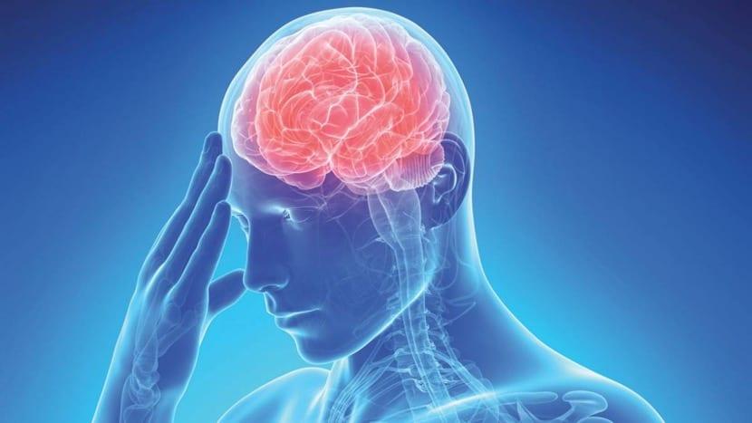 imagen de cerebro padeciendo ictus