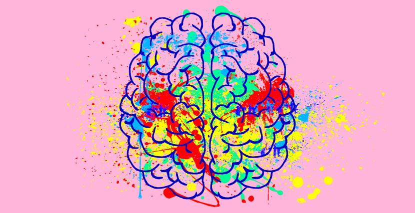 desarrollo moral cerebral