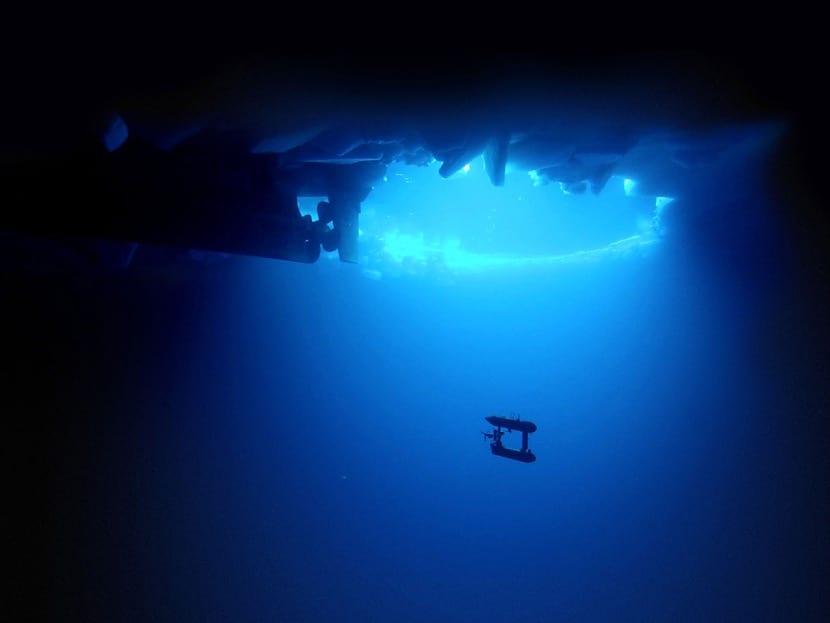 miedo al fondo del mar