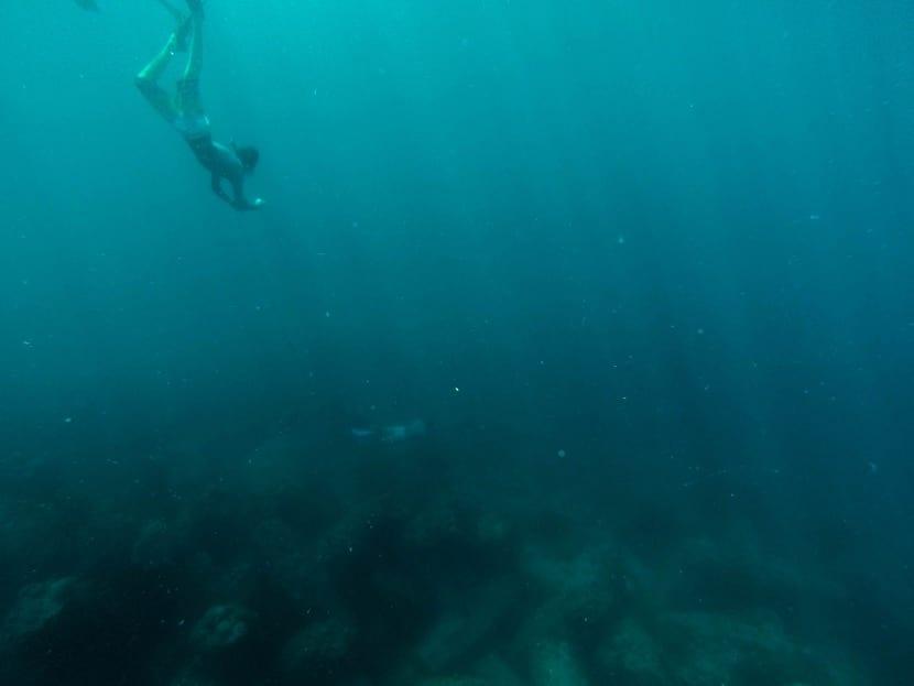bucear en el fondo del mar
